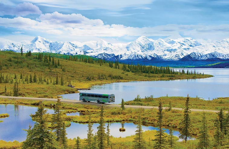 Denali National Park Tours Great Alaskan Backcountry