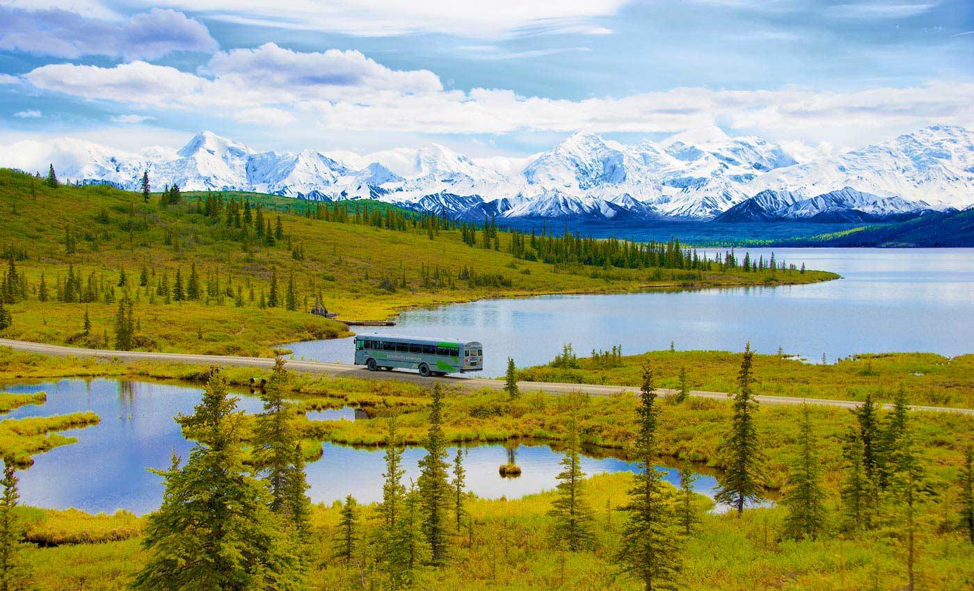 Denali National Park Tours Great Alaskan Backcountry Adventures