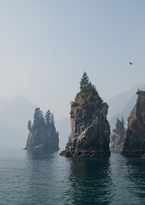 Rock pillars rise from the sea near the forested coast.