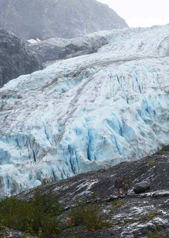 Hike the trail to Exit Glacier