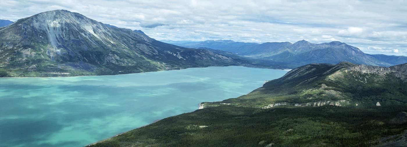 explore the yukon river bear caribou spotting in arctic alaska