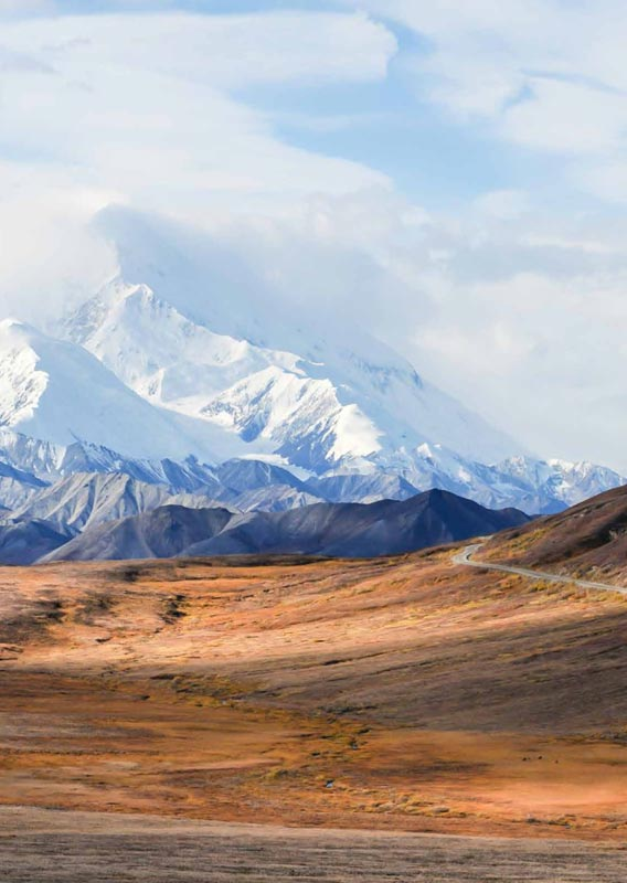 View of Denali and the Denali Park Road in Fall