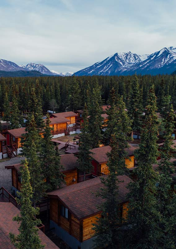 Cabins nestled between tall conifers and a view towards mountains.