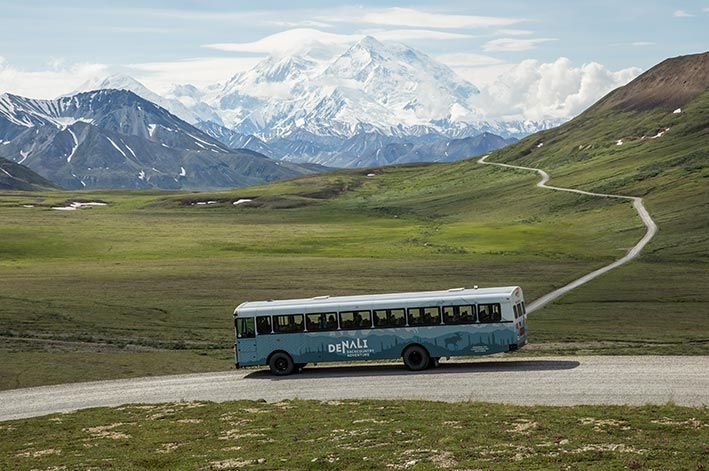 A blue bus stopped at a roadside overlooking a wide valley towards Denali