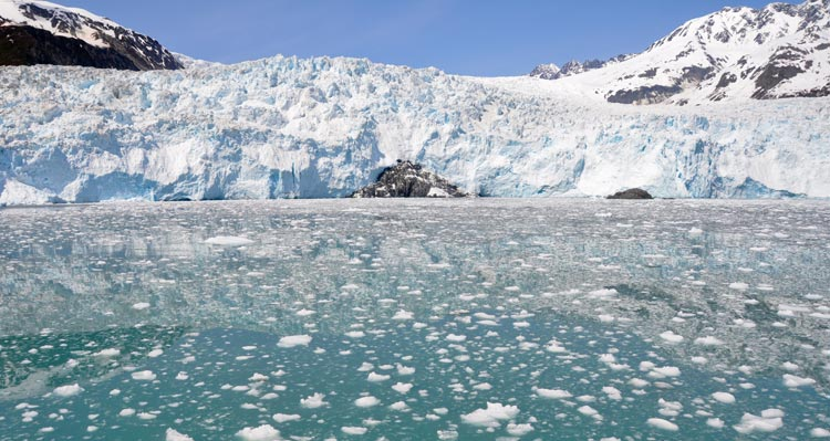 A tidewater glacier against turqoise ocean water with lots of little chunks of ice floating