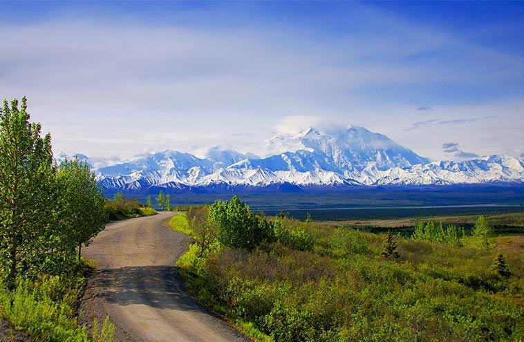 Denali National Park In June A Time Of Wonder Amp Waking