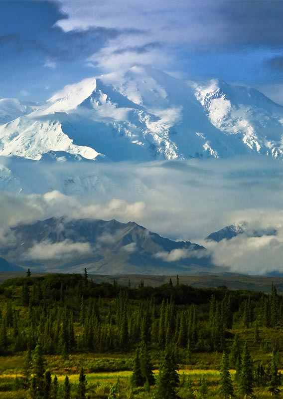 Denali in June