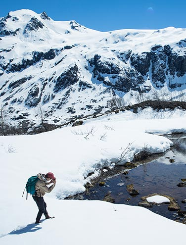 The Trail to Exit Glacier: A must-do in this lifetime