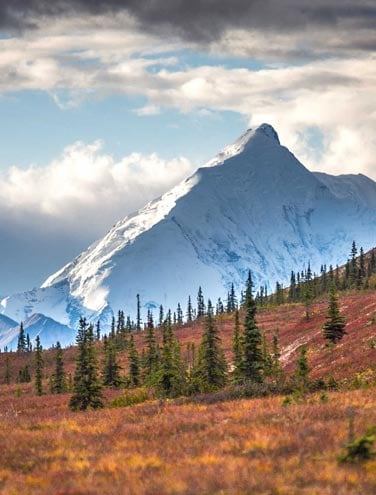 Six Reasons it's Time to Book Your Alaska Vacation