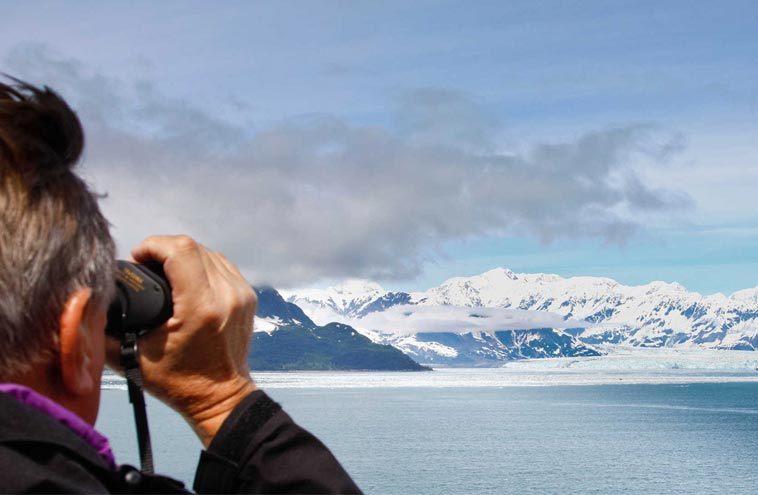 Planning Alaskan Tours Both Cruise And Land Travel