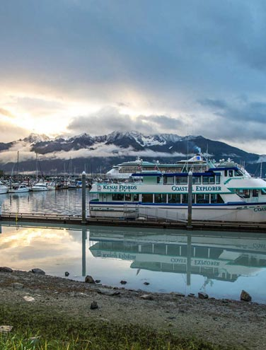 Good Morning, Resurrection Bay: 9 Reasons We Love Seward