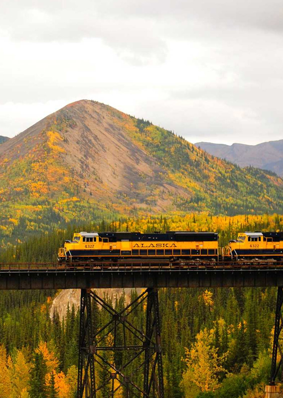How Alaska Railroad Tours Connect the Best