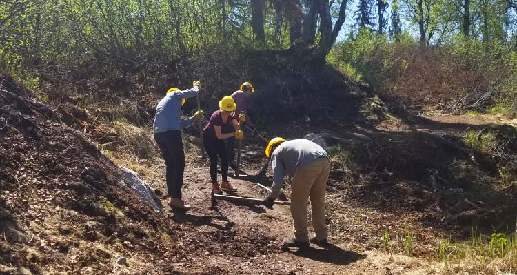 A group of people work on building a trail in a wooded area.