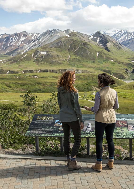 Two people stand at an interpretive sign at Eielson lookout, looking out to tundra and mountains.