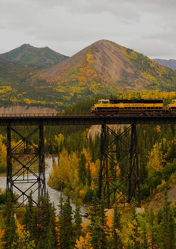 A train travels on an trestle bridge over a river in a deep valley.