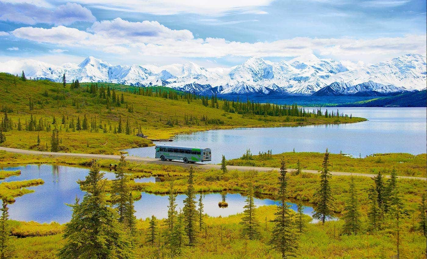 Denali National Park & Interior