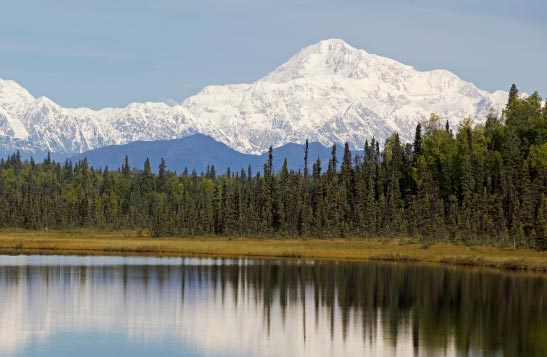 View of Denali with a lake and trees in the foreground