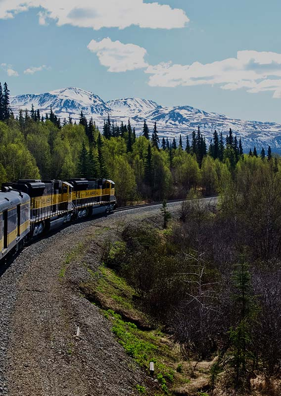 A blue and yellow train moves along the track between forests and below snowy mountains.